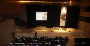 "Asistentes Plenario ""Enrédate Castellón 2013"""
