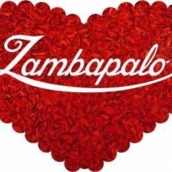 Zambapalo -Dinamización de eventos a través de las emociones visuales.
