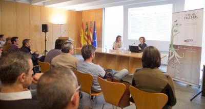 IVACE da a conocer opciones para internacionalizar ideas y negocios innovadores