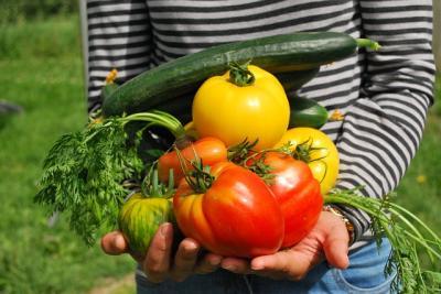 Taller de Creación de Empresas para Emprendedores Agroalimentarios