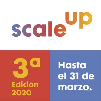 Bases Programa Scale Up 2020