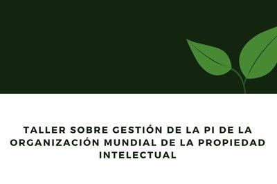 Taller sobre gestión de la PI de la Organización Mundial de la Propiedad Intelectual